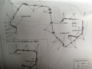 IMG_8319.jpg